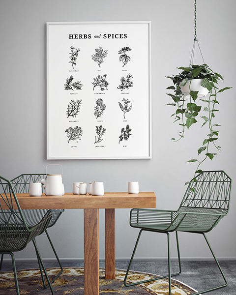 Herbs & spices poster